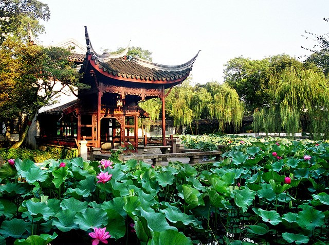 Why you shoud visit Suzhou in Chinese?