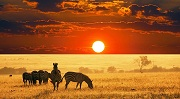 Best places you can not miss when travel to Kenya