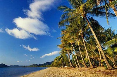 palm cove beach- australia