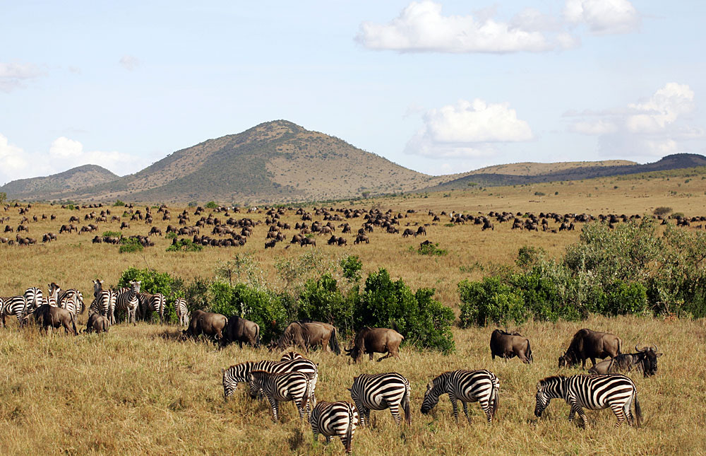 Masai National Reserve in Kenya